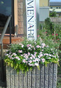 サロンドリーム様夏花壇