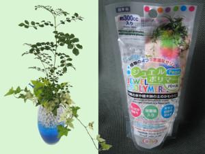高給水性樹脂ポリマーを使って寄せ植え