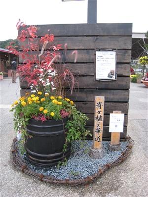 花フェスタ記念公園で大きな寄せ植えの展示