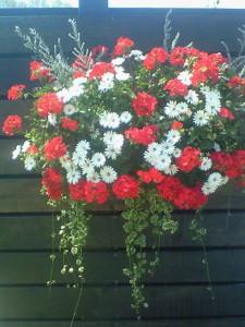 080413花フェスタ記念公園巨大ハンギングバスケット「みんなに元気を!!」