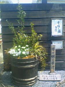 080413花フェスタ記念公園巨大寄せ植え「みどりに癒されて」