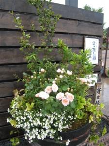 花フェスタ記念公園 巨大なバラの寄せ植え花創人はなそうにん