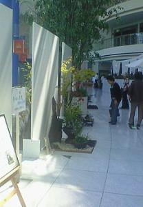 寄せ植え華道発表会 展示の様子