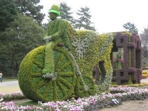 堺市「緑の風の自転車」