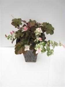 ヒューケラとハツユキカズラの寄せ植え『残暑厳しき折 一服の清涼剤』花創人はなそうにん