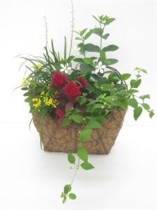 秋の寄せ植え 「秋の花籠」花創人はなそうにん