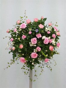 薔薇のゴージャスハンギングバスケット