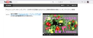 Youtube警告「あなたの動画に対する著作権侵害の申し立てはありません。」