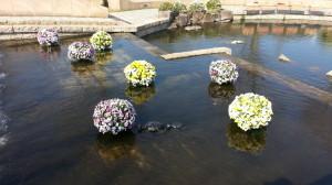 140324オアシスパーク水上花壇