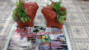 140329伊木山ガーデン多肉植物寄せ植え