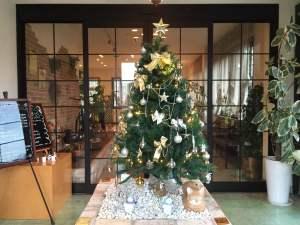 2014年ステラルーチェ様クリスマスツリー