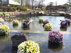 150325オアシスパーク水上花壇