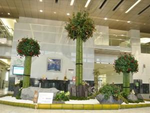 一番背の高い竹は4M、柳の先までの高さは、6Mあります。