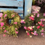 150327ピンクで可愛らしく小花のハンギングリース